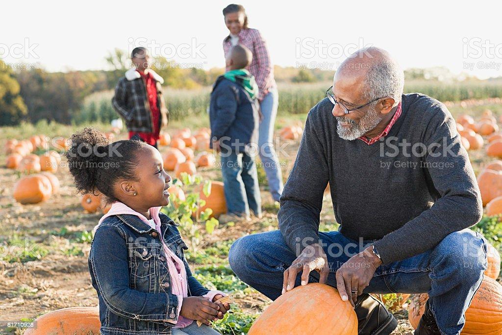 A grandfather and his granddaughter looking at pumpkins stock photo