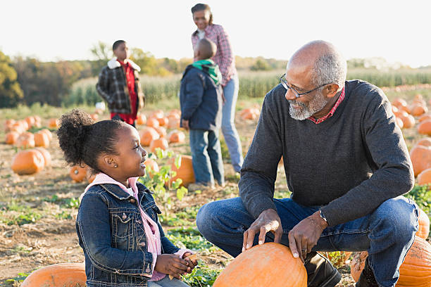 A grandfather and his granddaughter looking at pumpkins stock photo