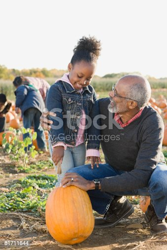 81711567 istock photo A grandfather and his granddaughter looking at pumpkins 81711644