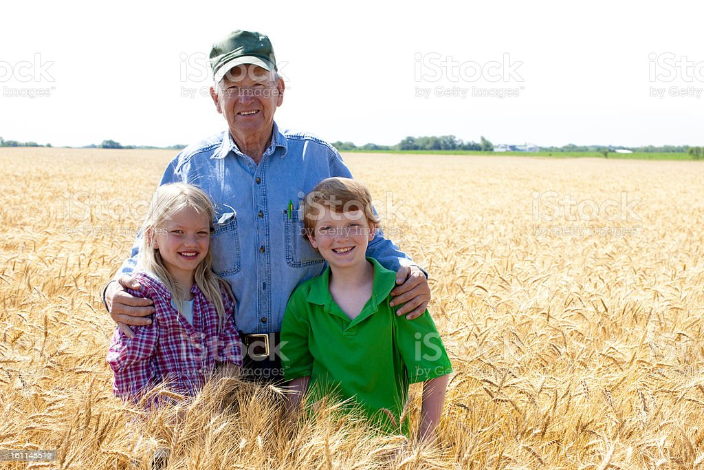 Grandfather Farmer Stands with Grandchildren in Wheat Field Fami stock photo