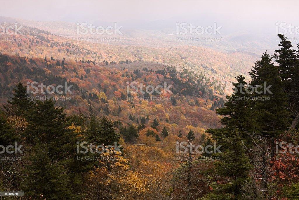 Grandfather Mountain Fall Foliage stock photo