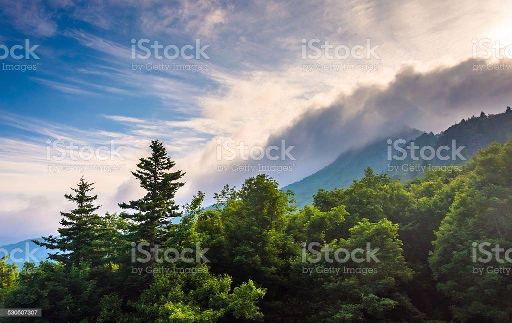 Grandfather Mountain in fog, near Linville, North Carolina. stock photo