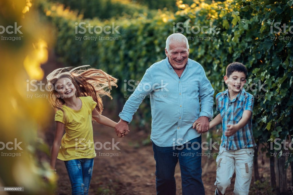 Grandfather showing his vineyard to his grandchildren stock photo
