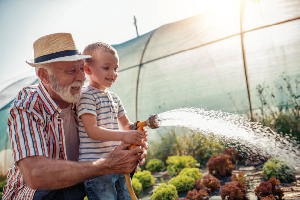grandfather with his grandson working in the garden - watering stock pictures, royalty-free photos & images