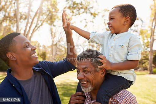 istock Grandfather With Son And Grandson Having Fun In Park 646011746