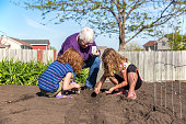 Two young girls (sisters) helping Grandma plant green beans in the garden on a beautiful springtime day. The younger sister is on the left with curly red hair, and the older sister is on the right with curly blonde/brown hair. Grandma is holding the seed packet as the girls place the seeds in the soil.