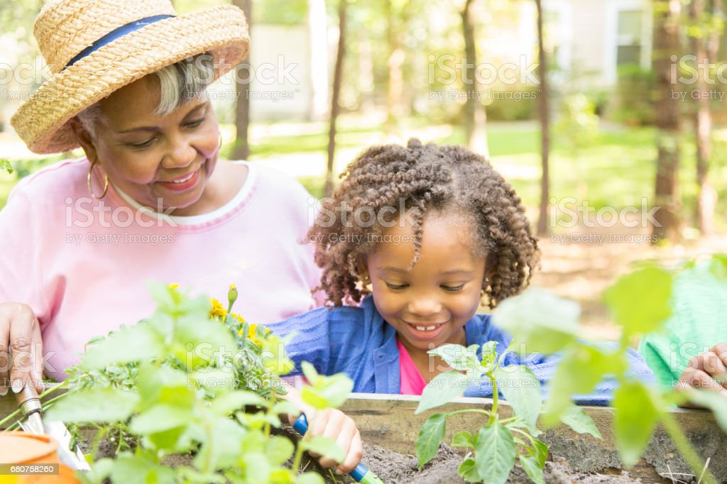 Grandmother and child gardening outdoors in spring. stock photo