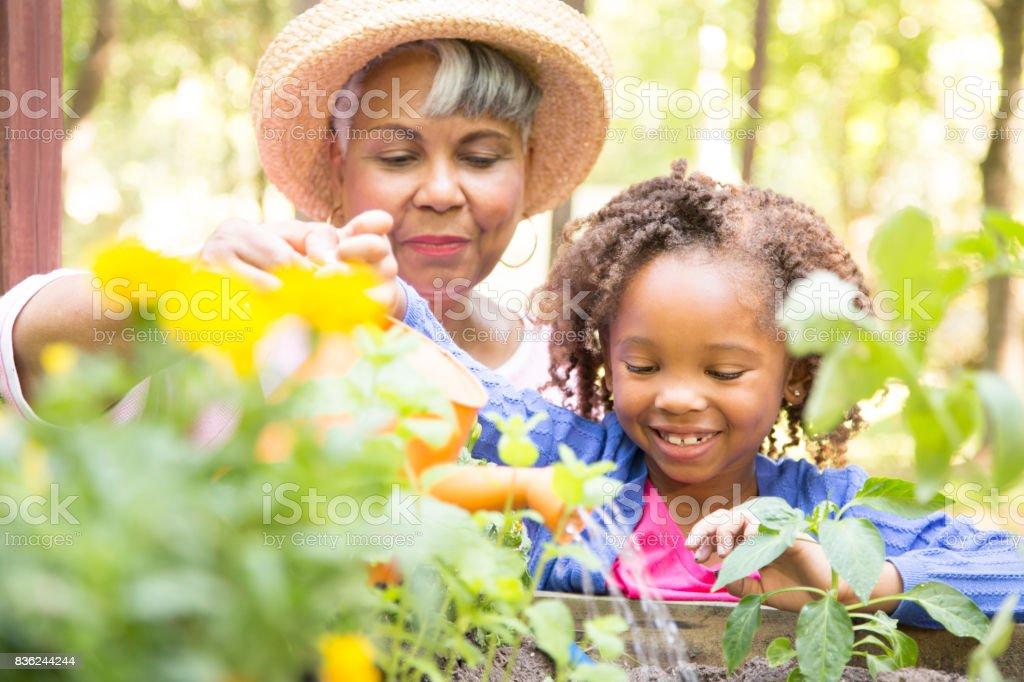 Grand-mère et enfant jardinage à l'extérieur au printemps. - Photo