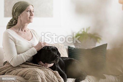 istock Grandmother and dog on sofa 855393692