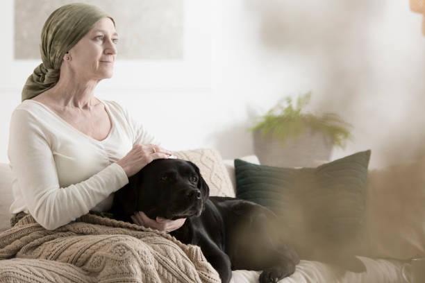 Grandmother and dog on sofa picture id855393692?b=1&k=6&m=855393692&s=612x612&w=0&h=jhqo8ht2kextkvk5onbklizktqonlcvmadrvja iqxy=