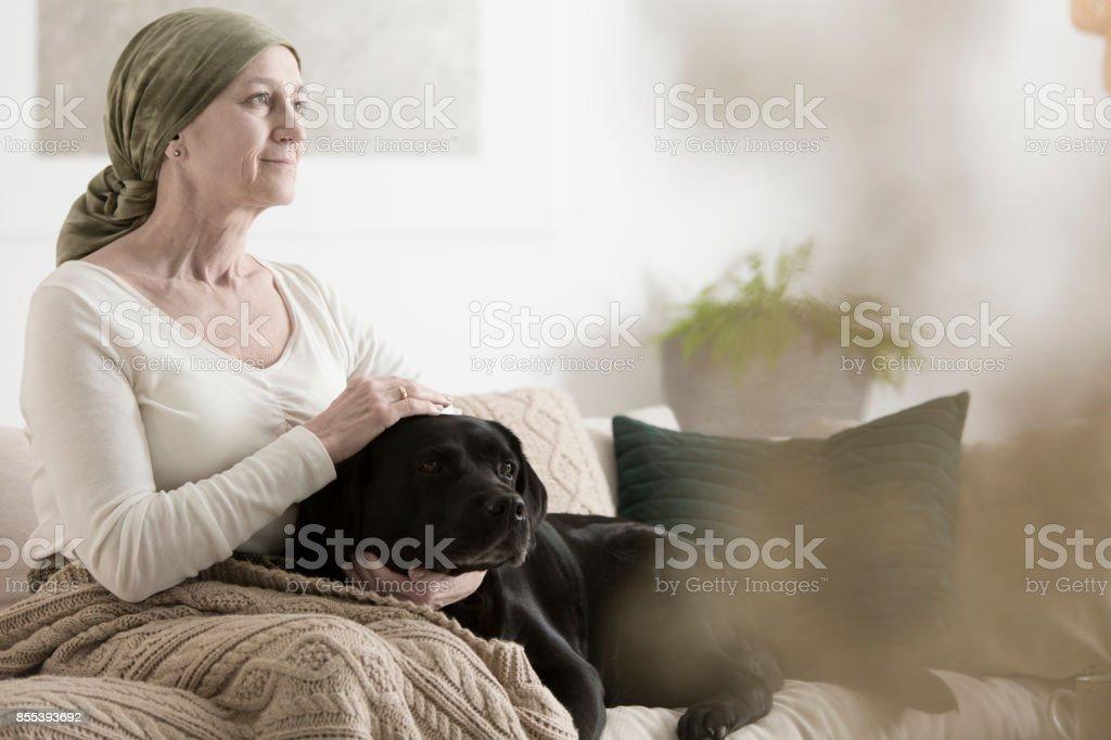 Grandmother and dog on sofa stock photo