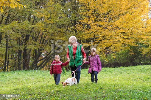 istock Grandmother and grandchildren 526896977