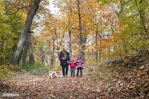 istock Grandmother and grandchildren 526896979