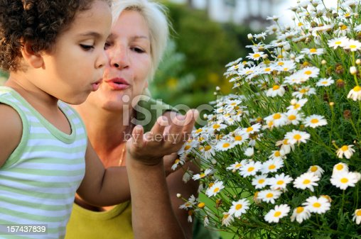 Royalty free stock photo of grandmother and her granddaughter looking at flowers
