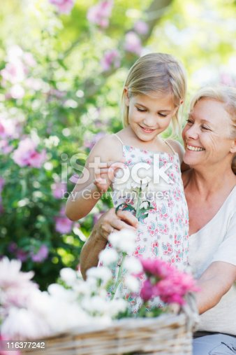 istock Grandmother and granddaughter in garden 116377242