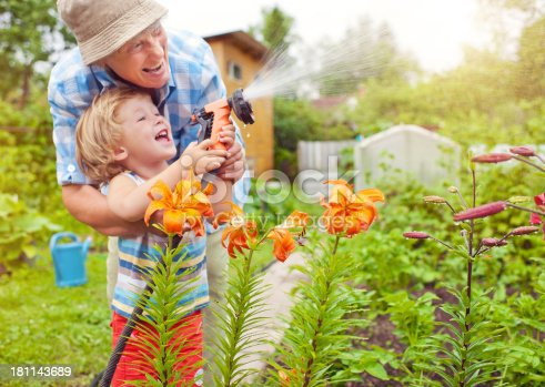 istock Grandmother and grandson in the garden 181143689