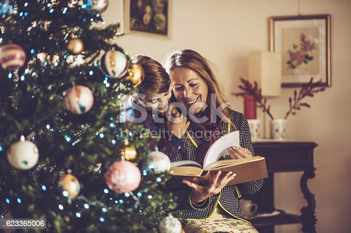 istock Grandmother and Grandson reading Fairy Tales on Christmas 623365006