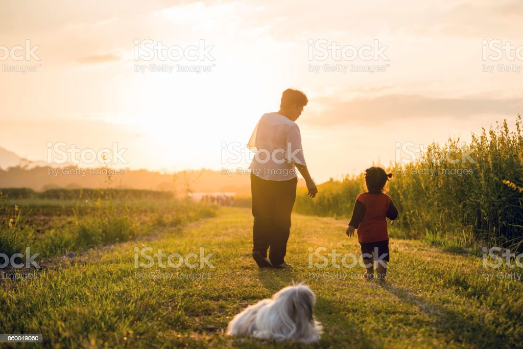 Grandmother, daughter and a dog with happy family enjoying life together at meadow; light and lens flare effect tone stock photo