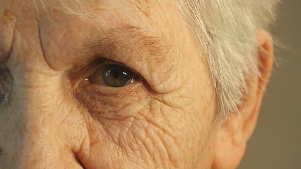 großmutter in die kamera schaut an. nahaufnahme - rentenpunkte stock-fotos und bilder