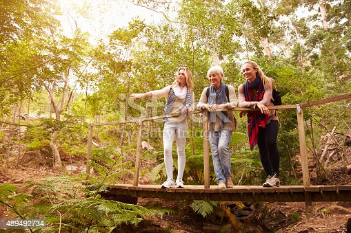 istock Grandmother, mother and daughter on a bridge in forest 489492734