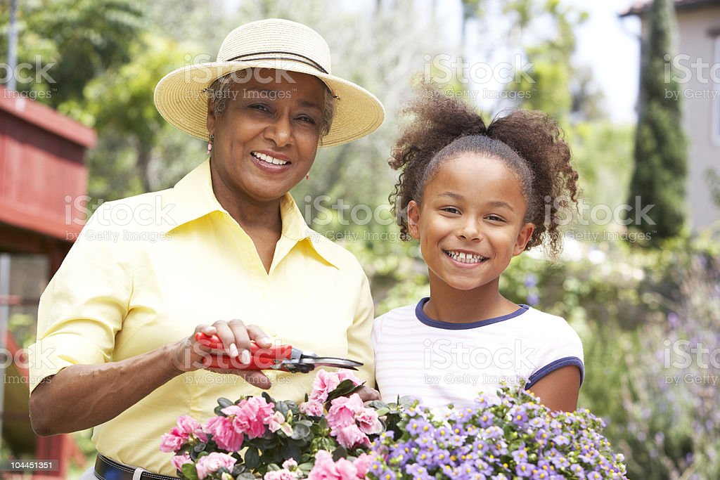 Grandmother With Granddaughter Gardening royalty-free stock photo