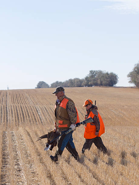 Grandpa and Grandson Hunting Grandpa and Grandson out Pheasant Hunting hunter stock pictures, royalty-free photos & images