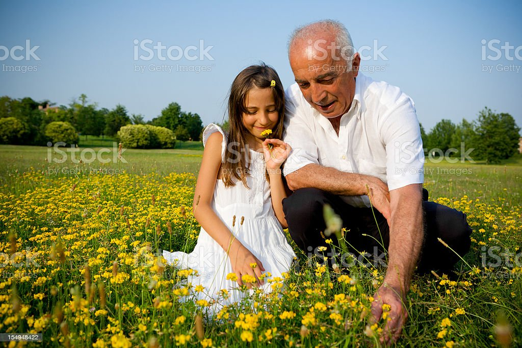 Grandpa and niece collecting flowers stock photo