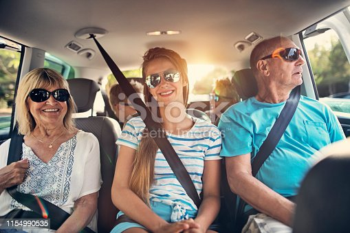 istock Grandparents and grandchildren having fun road trip 1154990535