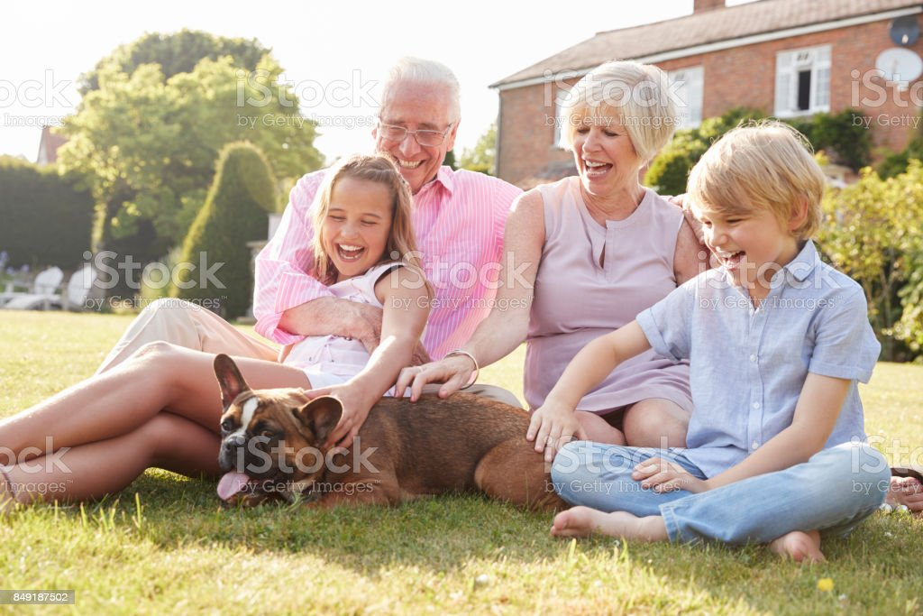Grandparents and grandchildren sitting in garden with dog stock photo