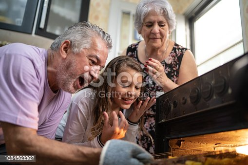 494086690istockphoto Grandparents and Granddaughter Checking the Traditional Turkey for Christmas Dinner 1084563362