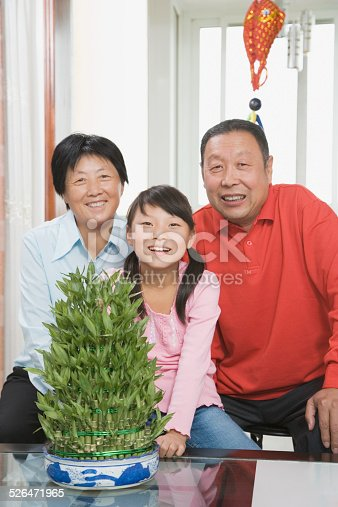 Grandparents and granddaughter smiling, portrait