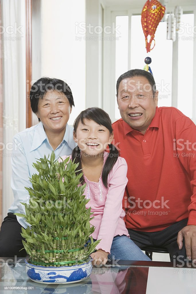 Grandparents and granddaughter smiling, portrait royalty-free stock photo