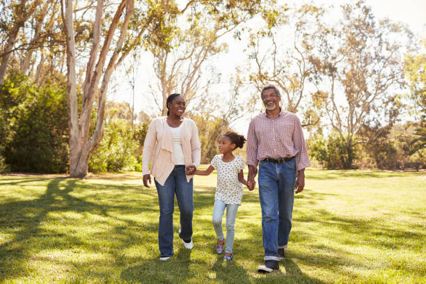 Grandparents And Granddaughter Walking In Park Together stock photo