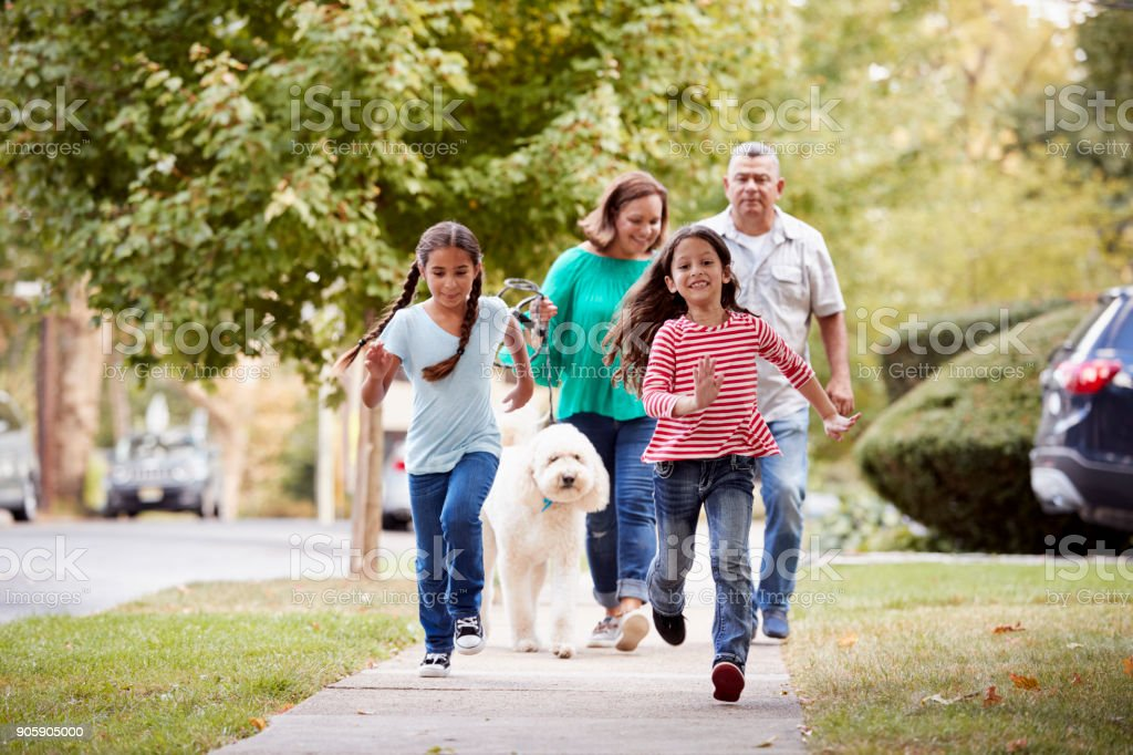 Grandparents And Granddaughters Walking Dog Along Street stock photo