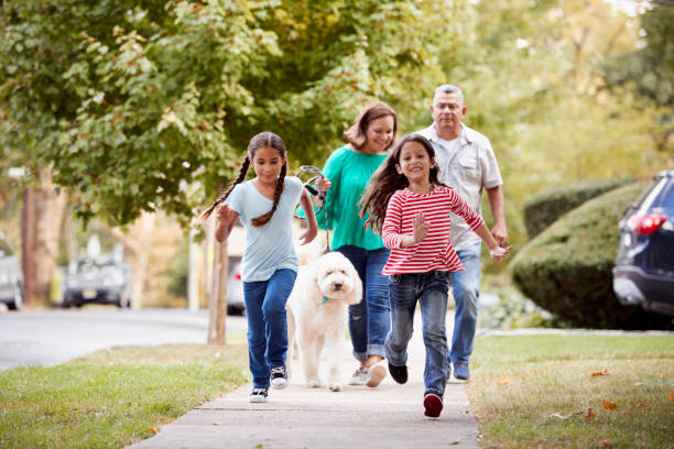 grandparents and granddaughters walking dog along street - residential district stock pictures, royalty-free photos & images