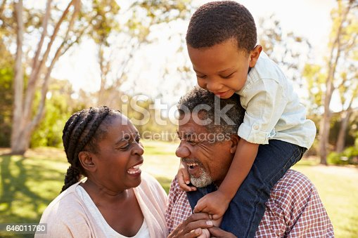 istock Grandparents And Grandson Having Fun In Park Together 646011760