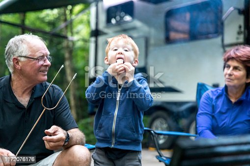 Grandparents and Grandson Roasting Marshmallow over Campfire in Camping in Summer