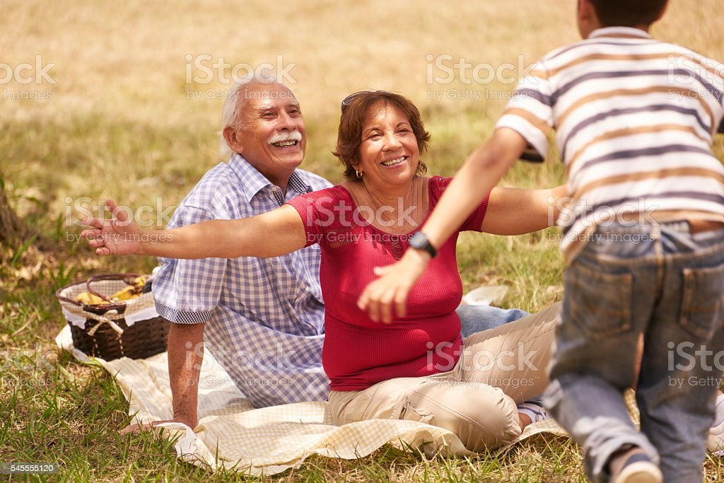 Grandparents Senior Couple Hugging Young Boy At Picnic - foto de stock