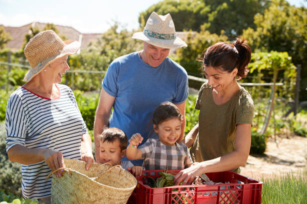 Grandparents With Adult Daughter And Grandchildren On Allotment stock photo