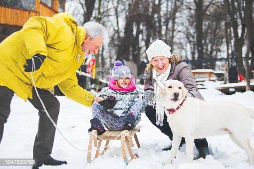 Grandparents with grandchild have winter fun