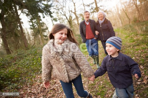 istock Grandparents With Grandchildren On Walk In Countryside 510040115
