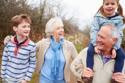 510042945 istock photo Grandparents With Grandchildren On Walk In Countryside 510041325
