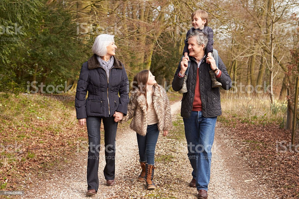 Abuelos con sus nietos en Paseo en campo - foto de stock