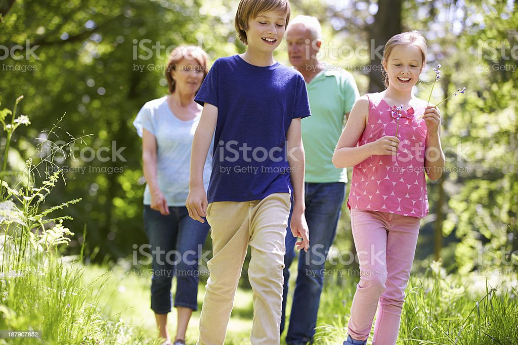 Grandparents With Grandchildren Walking Through Countryside royalty-free stock photo