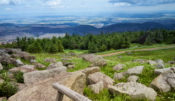 granite blocks on the brocken plateau in front of a spruce plantation with a view of the flat vorharz in the distance to the horizon - deposition stock pictures, royalty-free photos & images