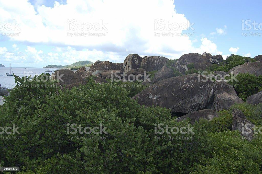 Granite boulders and lush vegetation royalty-free stock photo