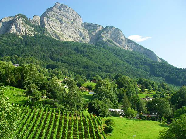 granitfelsen der schweizer alpen in der nähe von sarganz und liechtenstein, schweiz - robert weinberg stock-fotos und bilder