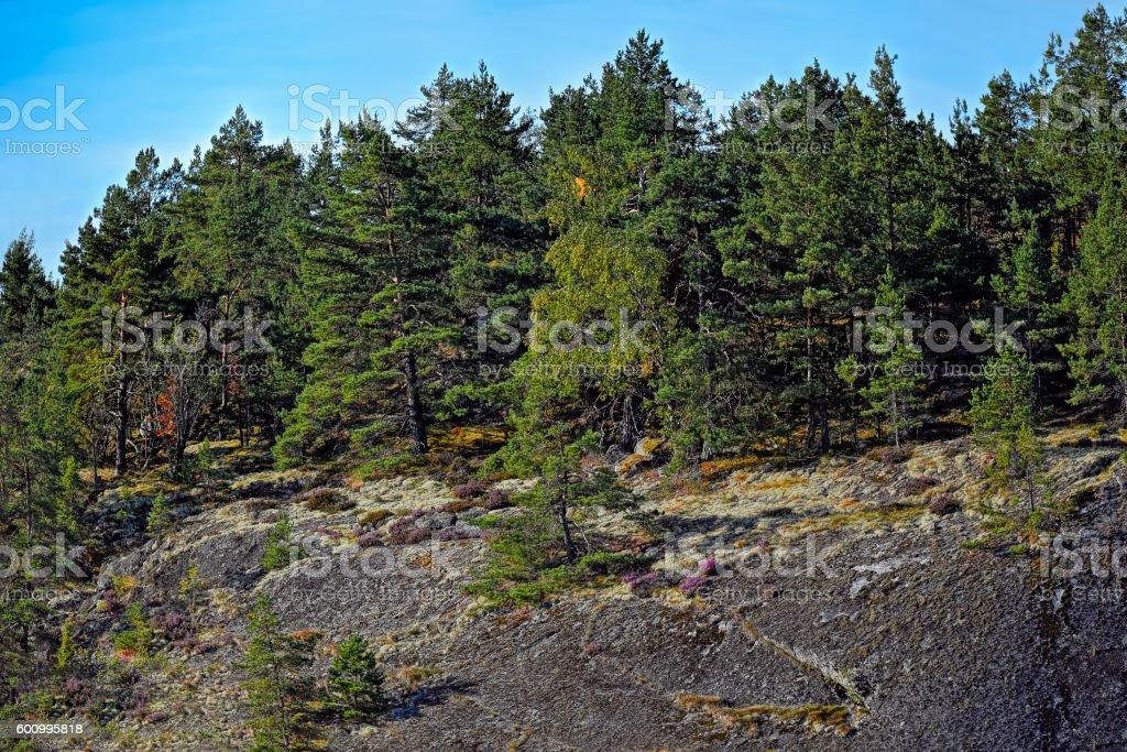 Granite rock rocks stock photo