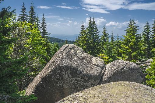 granodiorite, a volcanic rock, a beautiful look