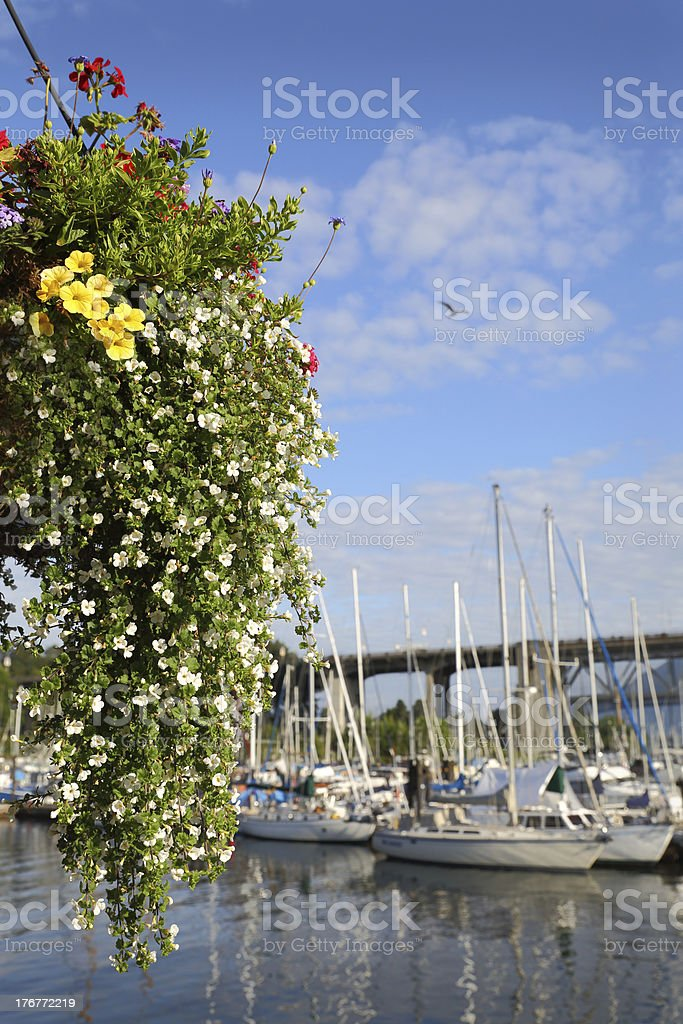 Granville Island Flower Basket, Vancouver royalty-free stock photo